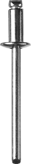 ЗУБР 3.2 x 8 мм, 1000 шт., заклепки из нержавеющей стали 31315-32-08 Профессионал - фото 12901