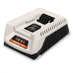 Универсальное зарядное устройство Daewoo DACH 2040Li - фото 30882