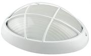 СВЕТОЗАР 100 Вт, IP54, влагозащищенный, белый, светильник уличный SV-57303-W