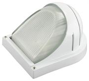СВЕТОЗАР 60 Вт, IP54, влагозащищенный, белый, светильник уличный SV-57355-W