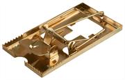 STAYER 95х50 мм, металлическая, малая, мышеловка 40490-S