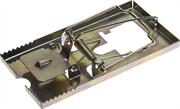 STAYER 115х60 мм, металлическая, средняя, мышеловка 40490-M