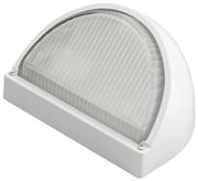 СВЕТОЗАР 60 Вт, IP54, влагозащищенный, белый, светильник уличный SV-57351-W