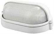 СВЕТОЗАР 60 Вт, IP54, влагозащищенный, белый, светильник уличный SV-57211-W