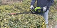 Кусторез аккумуляторный Greenworks GD60HT - фото 23997